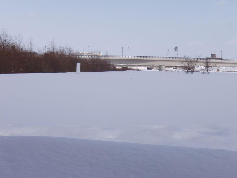 一面雪で覆われた河川敷