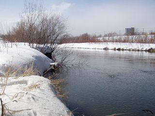 春の川、旅立ちの陽光