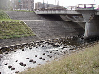 寒月橋下流のサケ観察ポイント