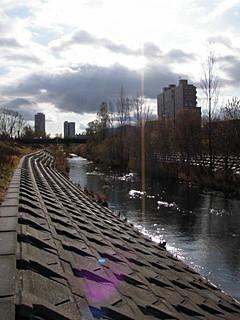 農試公園橋を下流から望む