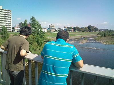 橋の上からサケ捜索