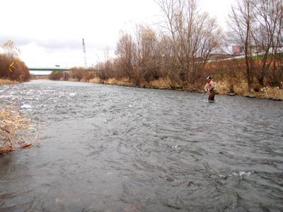 増水中の豊平川