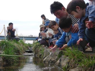家族でサケ稚魚体験放流