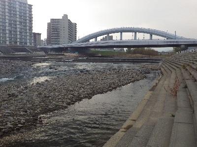 20131118豊平川サケ観察ポイント