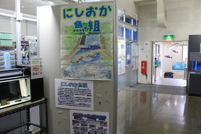 西岡公園自然調査報告展_03