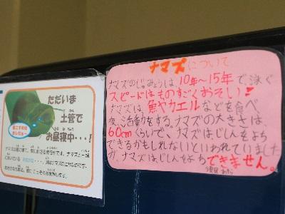 真駒内公園小展示_階段下