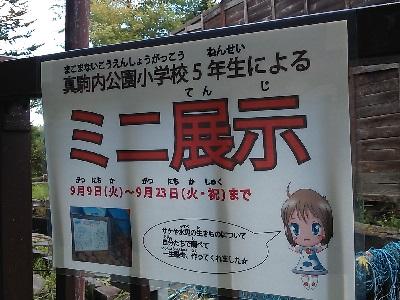 真駒内公園小展示_5