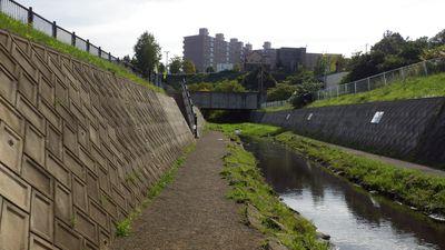 濁川の風景