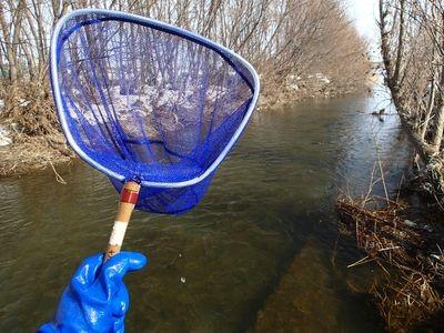 タモ網持って川へGO