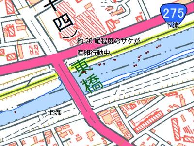 東橋観察ポイント