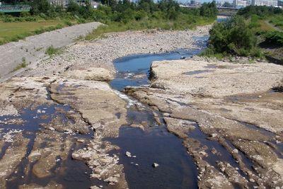 河床低下の様子