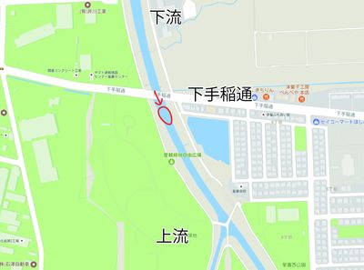 星置川サケ観察ポイント